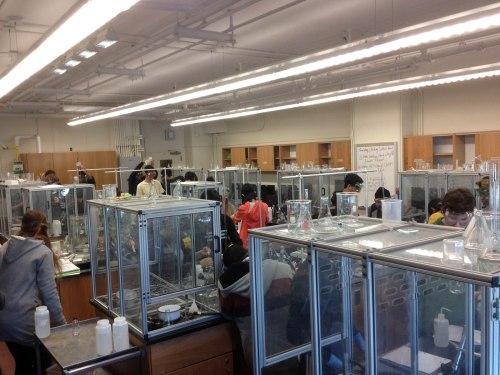 Advanced Chem Lab