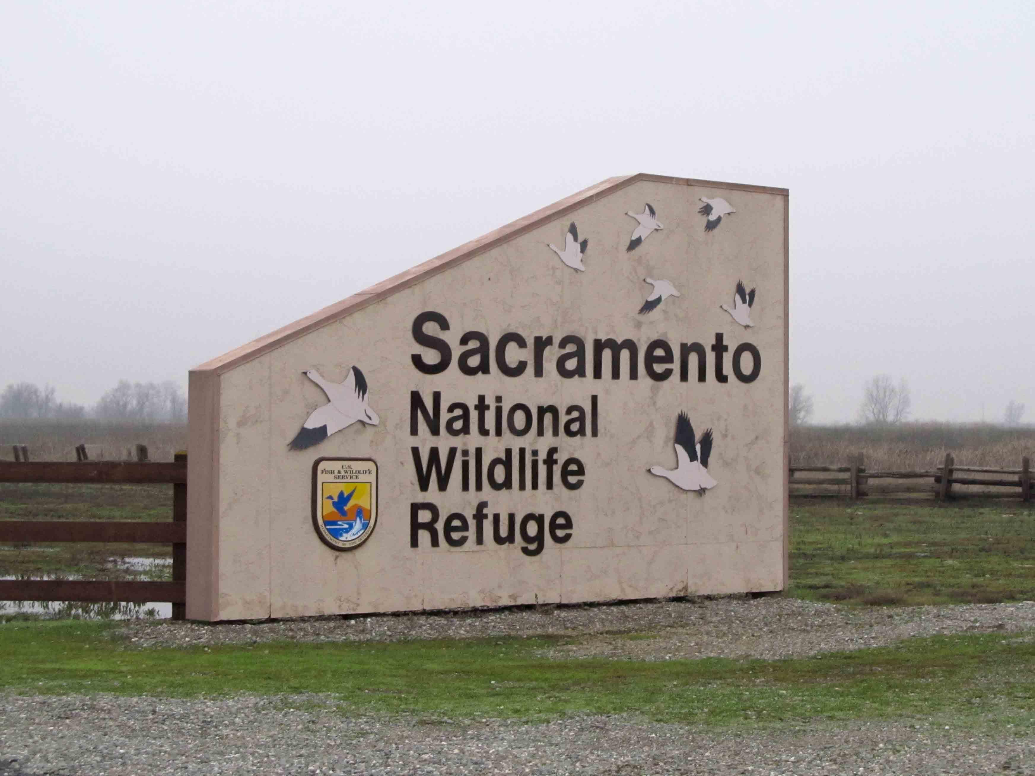 Sacramento NWR