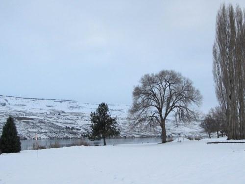 Snowy Eastern WA