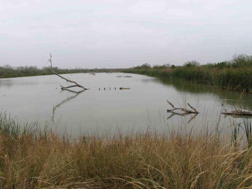 Estero Llano