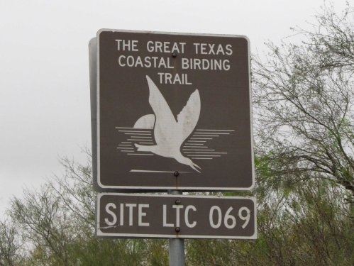 Great TX Birding Trail