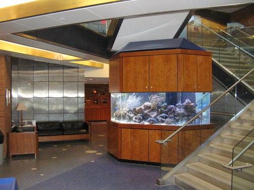 Science lobby