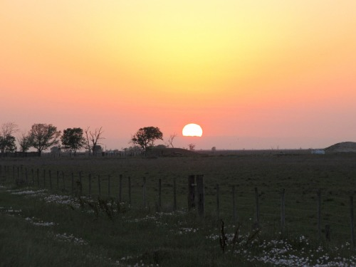 Anahuac Sunset