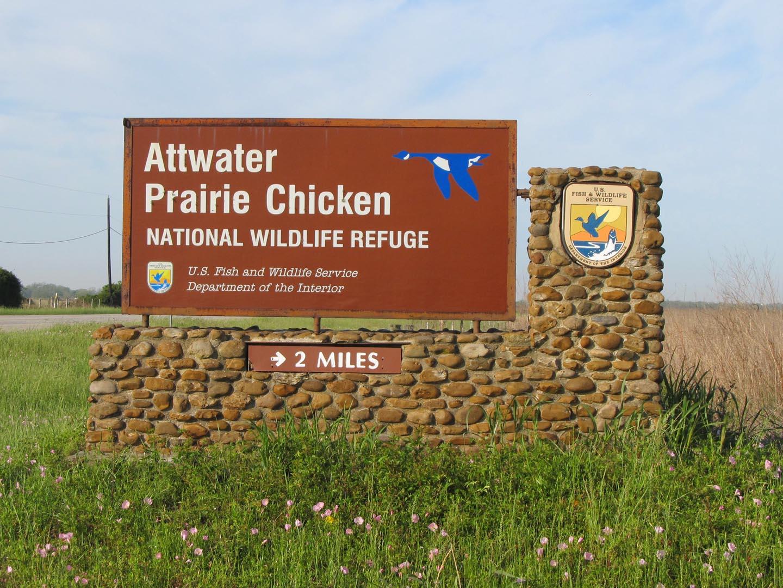 Attwater Prairie Chicken NWR
