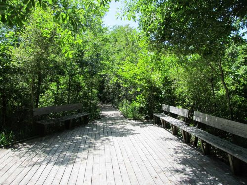 BSW Trail