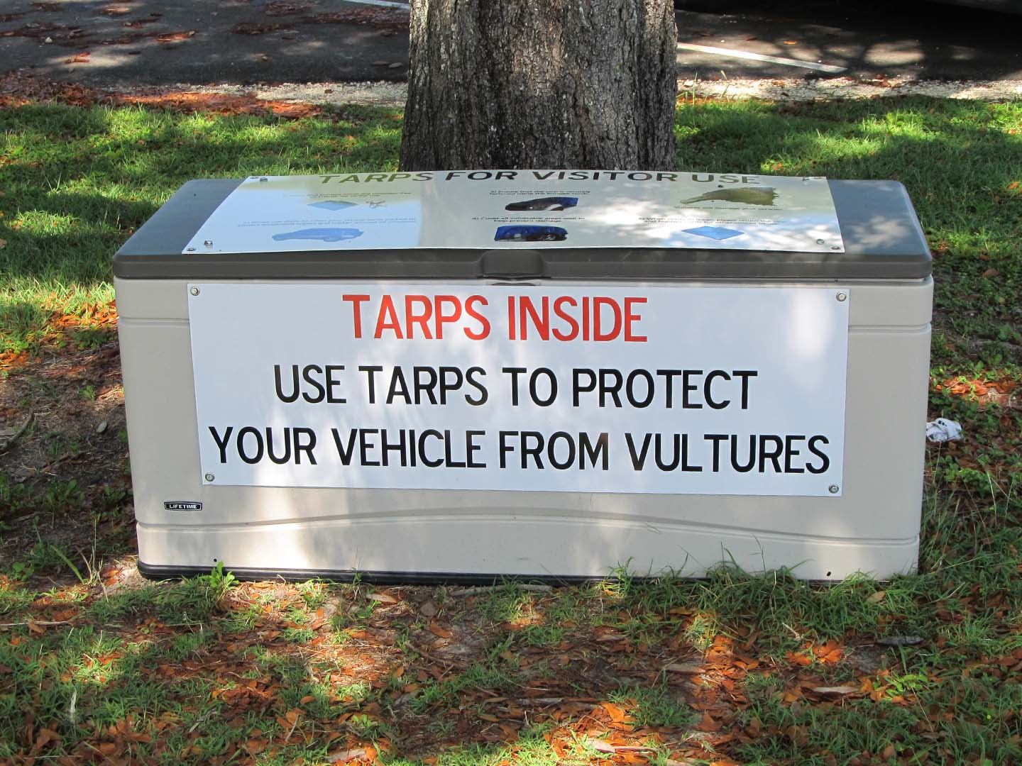 Tarps for vultures sign