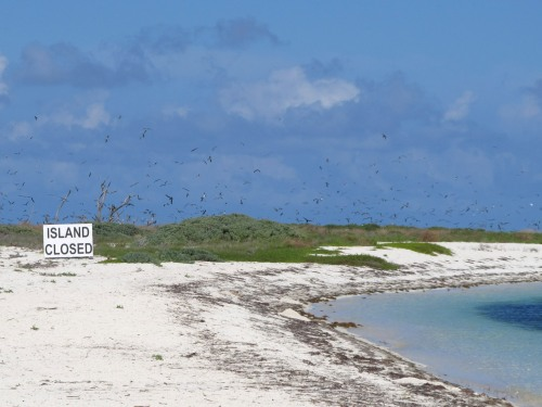 Island Closed
