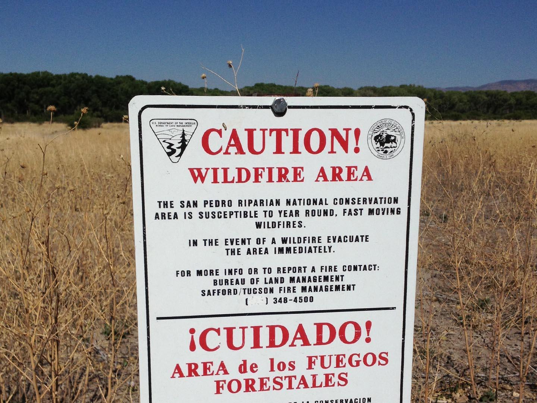 Wildfire Area
