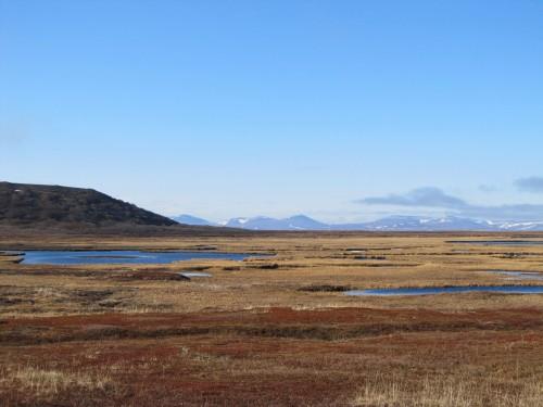 Nome Scenery