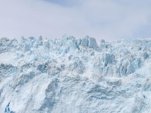 Whole Lotta Ice